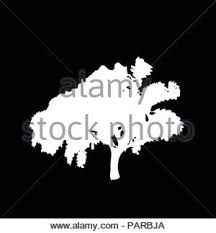 Black Silhouette Of Tree Isolated On White Background Vector