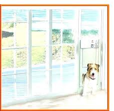 plexidor weatherproof dog doors the glass guru window door sliding pet full size of for sash