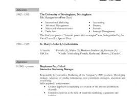 Professional Resume Sample Word Format And Basic Resume Template ...