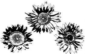 無料のベクトルひまわり ベクターの花 無料ベクトル 無料でダウンロード