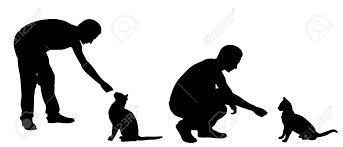 猫白で隔離を給餌人のシルエット