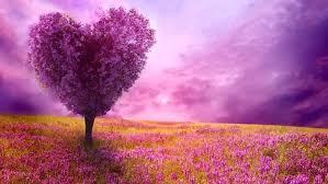 Purple Flowers Backgrounds Desktop Wallpaper Purple Flowers Purple Heart Shaped Tree