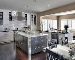 contemporary kitchen in the dc metro area