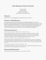 Sales Summary Resume Retail Resume Summary Retail Sales Associate Resume Unique