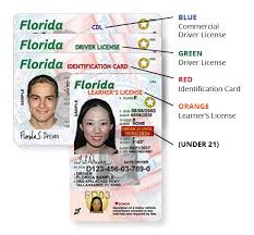's New Driver Florida Id Card And License – Florida Highway Safety 6UqZ7paSU