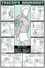 Legs Workout Wall Chart Professional Fitness Training Gym