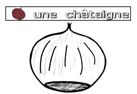 Fruits Coloriage De Chataigne L