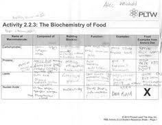 Biological Macromolecules Chart 28 Best Macromolecules Images Teaching Biology Biology