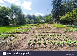 Organic Kitchen Garden Michelle Obamas Organic Kitchen Garden Of The White House In