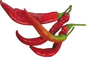 chili pepper png. Unique Png Red Chilli Pepper With Chili Png I