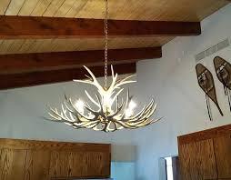 real antler chandelier real antler mule deer chandelier deer antler chandelier for australia real antler chandelier
