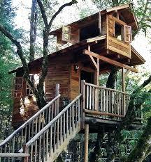 tree house ideas plans. Unique Tree Awesome Tree House Designs Ideas Plans  Amazing For For Tree House Ideas Plans I