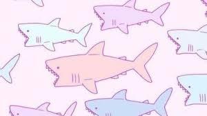 cute shark drawing tumblr.  Shark Kawaii Shark Inside Cute Drawing Tumblr E