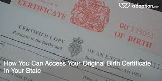 How You Can Access Your Original Birth Certificate In Your State ...