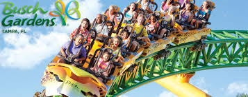 busch gardens tampa bay florida theme park will thrill the entire family with florida s best roller coasters rides attractions shows