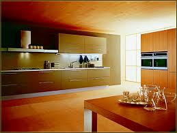 Under Counter Lighting Kitchen Battery Under Cabinet Lighting Kitchen Home Design Ideas