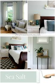 a cool and calming bedroom color sherwin williams sea salt