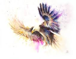 saatchi art artist boba j painting flying eagle art