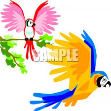 colorful birds flying clipart. Interesting Flying On Colorful Birds Flying Clipart R