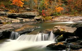 3d nature wallpaper for mobile phone. Autumn Nature Wallpaper For Mobile Phone Inside