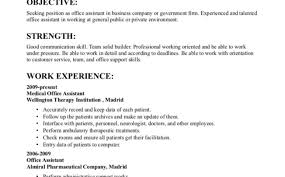 Sample Resume For Ceo Position Chief Operations Officer Coo