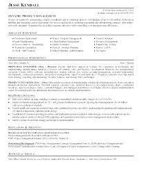 Director Engineering Resumes Senior Engineer Resume Airexpresscarrier Com