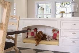 Is Bamboo Flooring Good For Kitchens Choosing The Best Type Of Flooring For Dogs And Their Owners