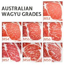 Wagyu Beef Today Gourmet Foods Of Nc