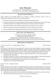 Server Resume Templates Magnificent Restaurant Server Resume Templates Formatted Templates Example