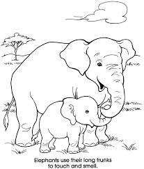 Small Picture 18 best Mom and Baby Animal Coloring Pages images on Pinterest