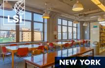 Image result for LSI New York