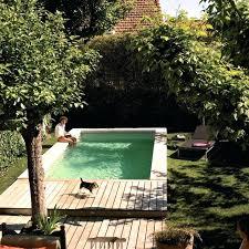 backyard infinity pools. Small Backyard Infinity Pools Pool House With