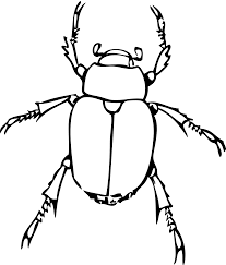 bug clipart png. insect clipart black and white free images 3 bug png