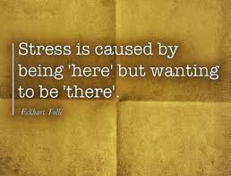 Eckhart Tolle Quotes Impressive Stress 48 Eckhart Tolle Quotes To Help You Put Things Into