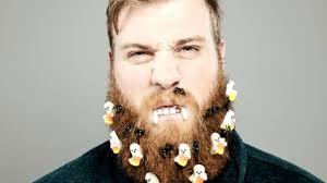 beard ideas for dudes with beards