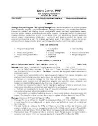pmo sample resume