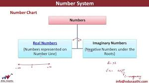 Classification Of Numbers Number Chart