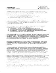 Resume Example Summary RESUME SUMMARY EXAMPLE Bidproposalform 6