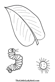 Free The Very Hungry Caterpillar Coloring Page Thelittleladybirdcom