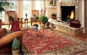 how to clean an area rug wool dog urine outside best way at home