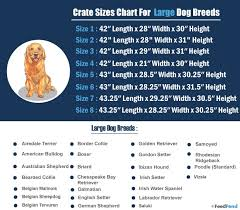 Dog Cage Size Chart 7 Best Heavy Duty Dog Crate In 2019 Feedfond
