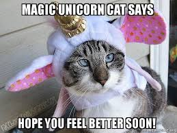 Magic Unicorn Cat Says Hope you feel better soon! - | Make a Meme via Relatably.com