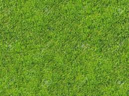 Seamless Grass Texture For 3d Or 2d Texturing (lawn)