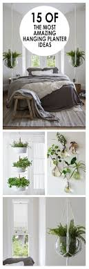 Hanging Planters Top 25 Best Indoor Hanging Plants Ideas On Pinterest Hanging