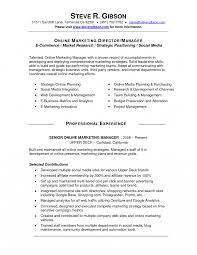 Social Media Manager Job Description Resume