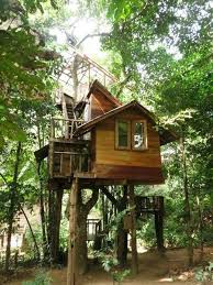 Tree House Plans Two Trees Luxury 1635 Best Tree House Images On