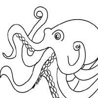 Small Picture Drawing octopus
