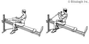 Total Gym Exercises By Weight Training Exercises Com