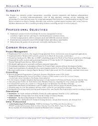 Example Of A Resume Summary 64 Images Executive Summary