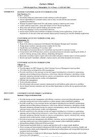 Download Customer Account Coordinator Resume Sample as Image file